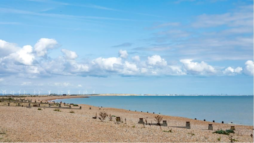 Winchelsea Sands Holiday Park Beach